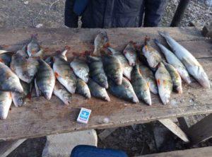 Астраханская рыбалка в марте