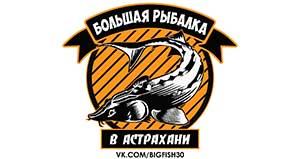 big-fish-logo